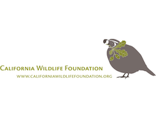 California Wildlife Foundation