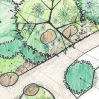 Extending Moore Creek Preserve into a Westside Front Yard