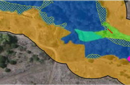Bay Farms Road Habitat Restoration Plan