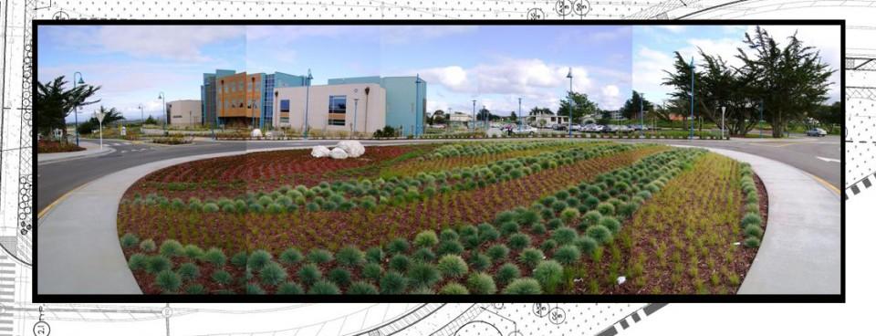 CSUMB 5th Ave Landscape Beautification