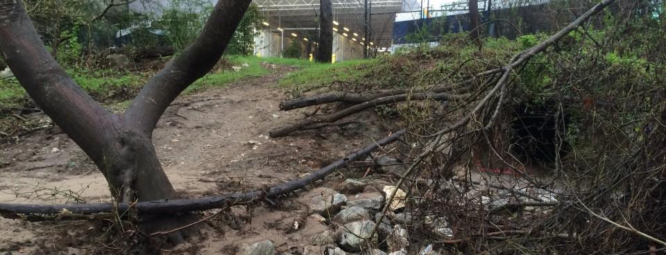 Santa Cruz Metro Stormwater Outfall